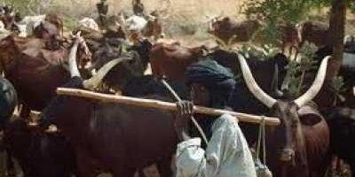 fulani-herdsmen 2