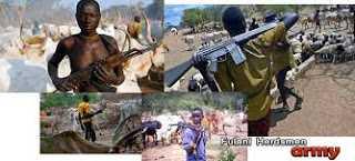 Fulani army